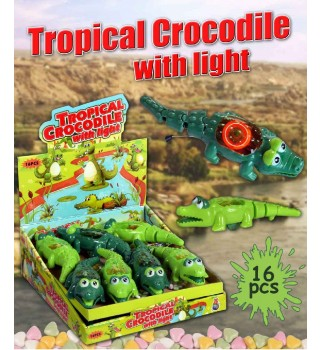 tropical crocodile with light
